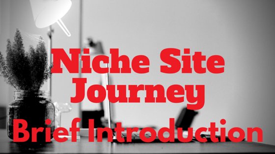niche site journey
